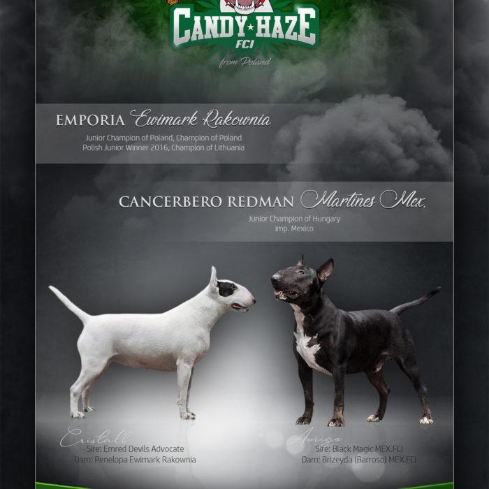 Candyhaze